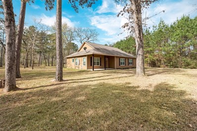 26085 Rolling Forest Ln Lane, Hockley, TX 77447 - MLS#: 2456991