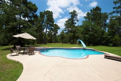 9031 Grand Lake Estates Drive, Montgomery, TX 77316 - MLS#: 24859512