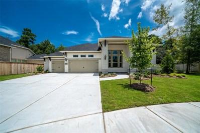 10402 Lake Palmetto Drive, Conroe, TX 77385 - MLS#: 25502488