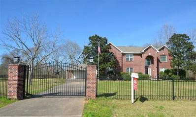 5434 Chinaberry Grove, Missouri City, TX 77459 - MLS#: 27210908