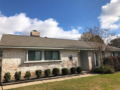 16711 Hibiscus Lane, Friendswood, TX 77546 - #: 27880467