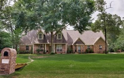 25817 Bridle Creek Drive N, Magnolia, TX 77355 - MLS#: 27971451