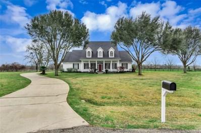 5302 River Park Drive, Richmond, TX 77406 - MLS#: 28598021