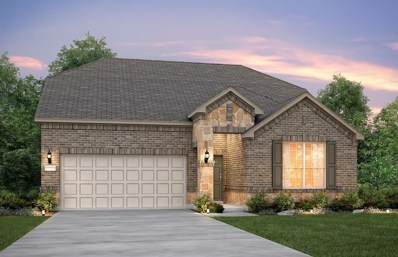 58 Pioneer Canyon Place, The Woodlands, TX 77375 - MLS#: 2908343