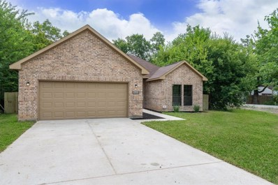 1223 Danube, Houston, TX 77051 - MLS#: 29747413