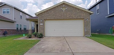 2607 Skyview Cove, Houston, TX 77047 - MLS#: 29892851