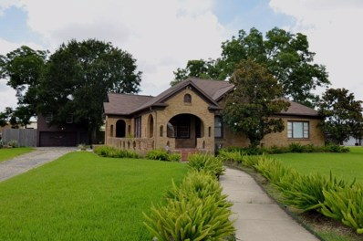 13902 Stafford, Stafford, TX 77477 - MLS#: 30714803