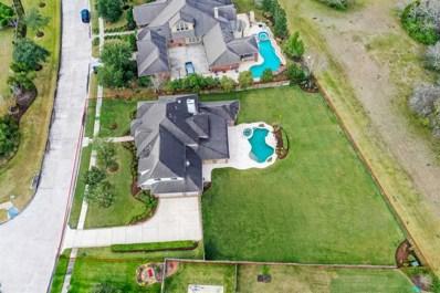 305 Northcliff Ridge Lane, Friendswood, TX 77546 - MLS#: 30970121