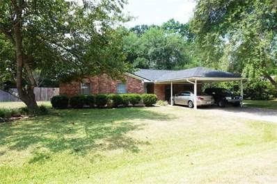 20690 Baptist Encampment Road, New Caney, TX 77357 - MLS#: 31539030