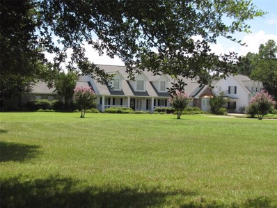 29800 Post Oak Run, Magnolia, TX 77355 - MLS#: 31672704