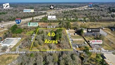 22835 Antique Lane, New Caney, TX 77357 - MLS#: 31673084