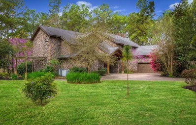 117 South Wind Drive, Montgomery, TX 77356 - #: 32087349