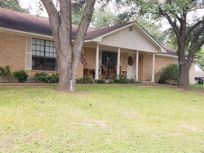413 14th Street, Hempstead, TX 77445 - MLS#: 32960288