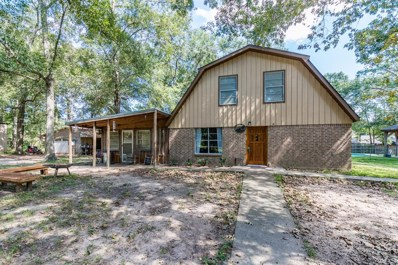 23789 Park Drive, New Caney, TX 77357 - #: 3406167