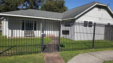 1301 Collingsworth Street, Houston, TX 77009 - MLS#: 34113049