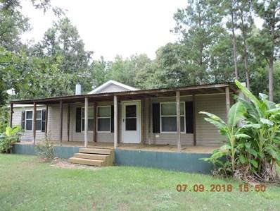 161 Leaning Oak Rd, Point Blank, TX 77364 - MLS#: 34283955