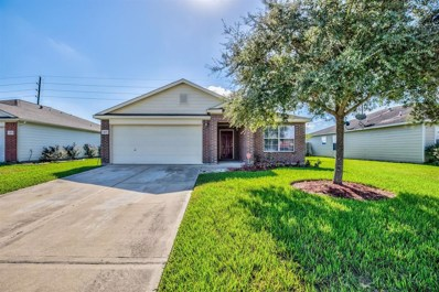 4207 Fielder Green Lane, Richmond, TX 77469 - MLS#: 3433343