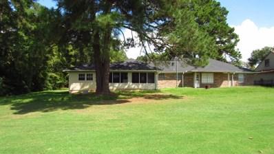 45 Broadmoor, Trinity, TX 75862 - #: 35673252
