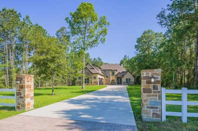15580 Guinevere Lane, Montgomery, TX 77316 - MLS#: 36591023