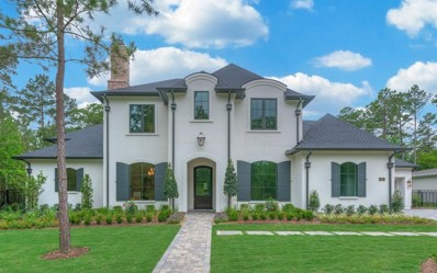 505 Grand Palisade Place, Montgomery, TX 77316 - #: 36717683