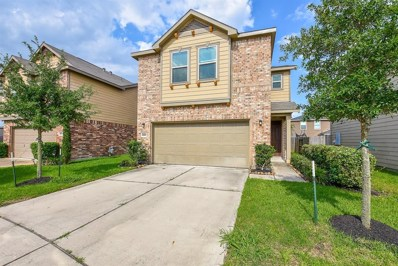 2507 Skyview Point Drive, Houston, TX 77047 - MLS#: 3743672