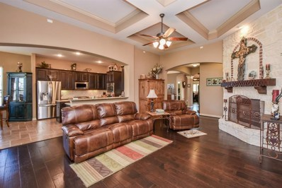 16315 Christopher Park Street, Hockley, TX 77447 - #: 37686243