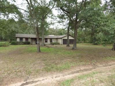 19546 E Lake Drive, Magnolia, TX 77355 - MLS#: 38261156