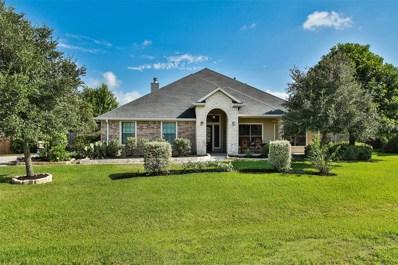 205 Nathanael Court, Montgomery, TX 77356 - MLS#: 38484649