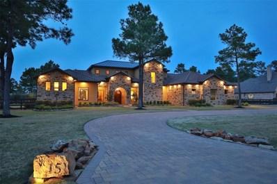 15 Royal King Road, Tomball, TX 77377 - #: 38825124