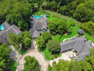 46 King Pine Court, The Woodlands, TX 77382 - #: 38919420