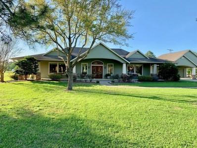 806 Evergreen Drive, Friendswood, TX 77546 - MLS#: 3912403