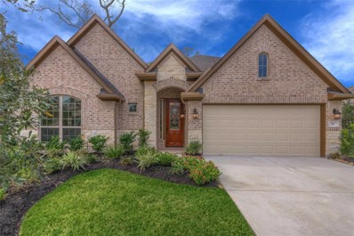 6 E Wading Pond Circle, The Woodlands, TX 77375 - #: 39639961