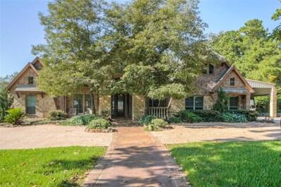 13092 Fm 2432 Road, Willis, TX 77378 - MLS#: 39819364