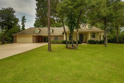 11608 King Edward Ct, Montgomery, TX 77316 - MLS#: 41749057
