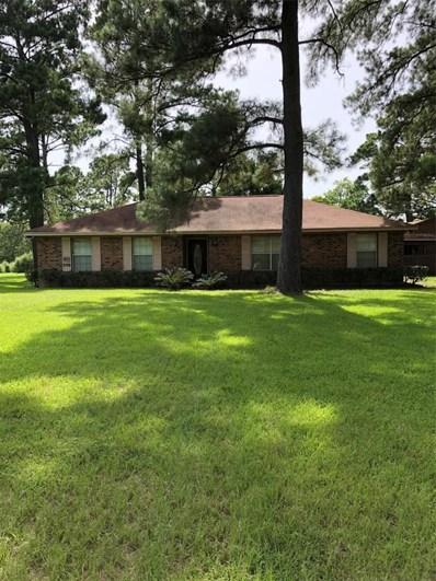 19858 W Lakeshore Drive, Magnolia, TX 77355 - MLS#: 42579332