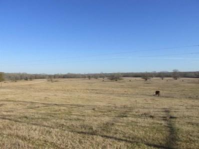 0 Jackson Rd, Magnolia, TX 77316 - MLS#: 43678291