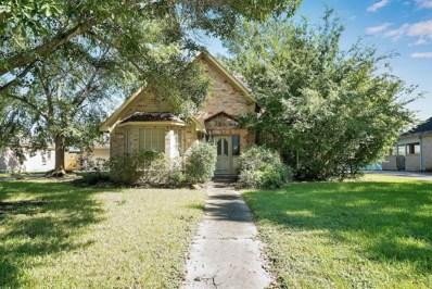 19806 Oak Green Court, Humble, TX 77346 - MLS#: 44619711