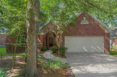 15 Painted Canyon Place, The Woodlands, TX 77381 - #: 45756881