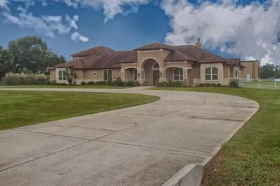 17201 Cowan, Algoa, TX 77511 - MLS#: 46298821