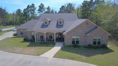 117 Timberwilde Drive Drive, Huntsville, TX 77320 - #: 47127475