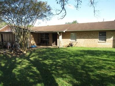 307 Still Forest Street, Liberty, TX 77575 - MLS#: 48074432