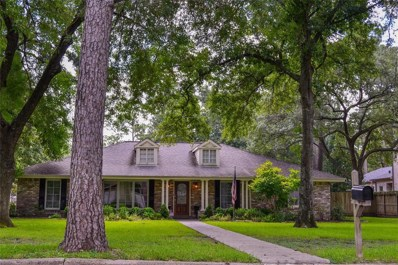 310 Rainier, Houston, TX 77024 - MLS#: 4811442