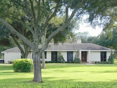 2511 McKeever Road, Rosharon, TX 77583 - #: 48143115