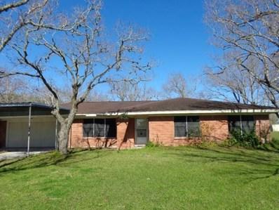 420 E Bayshore Drive, Palacios, TX 77465 - MLS#: 48889241