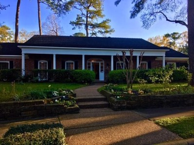 12335 Mossycup Drive, Houston, TX 77024 - MLS#: 50098680