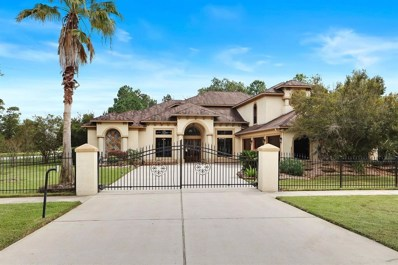27514 Siandra Creek, Spring, TX 77386 - MLS#: 50125562