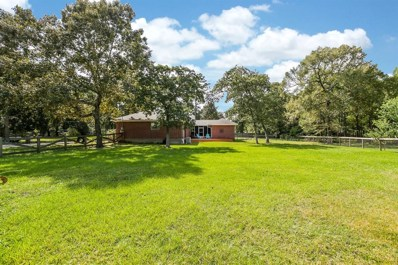 21800 Glenmont, Hockley, TX 77447 - MLS#: 52444841
