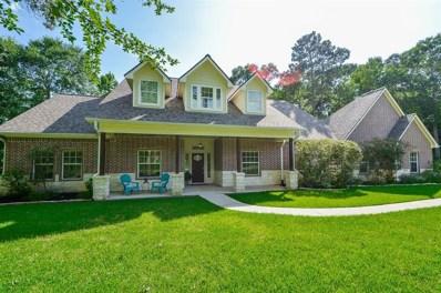 9 Double Creek Court, Willis, TX 77378 - MLS#: 52941661