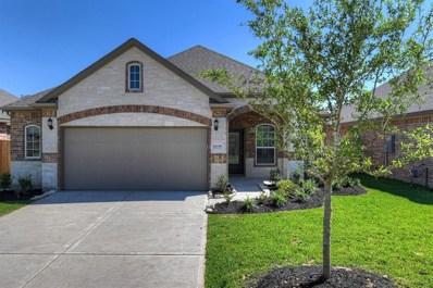 21330 Shadbush Avenue, Porter, TX 77365 - MLS#: 54690695