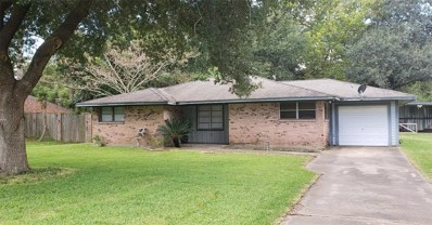 217 Lane, Texas City, TX 77591 - MLS#: 55577070